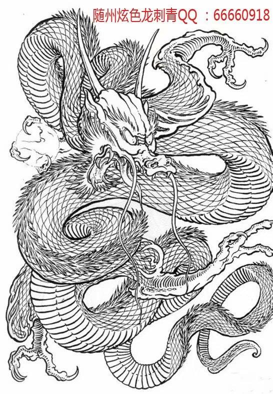 随州炫色龙刺青之满背龙纹身手稿纹身图案大全02图片